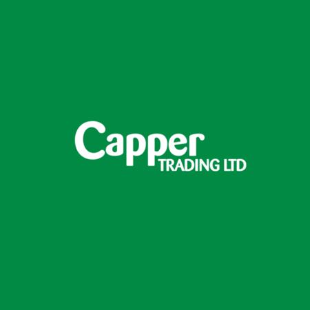 Rattan Langham Log Basket Small