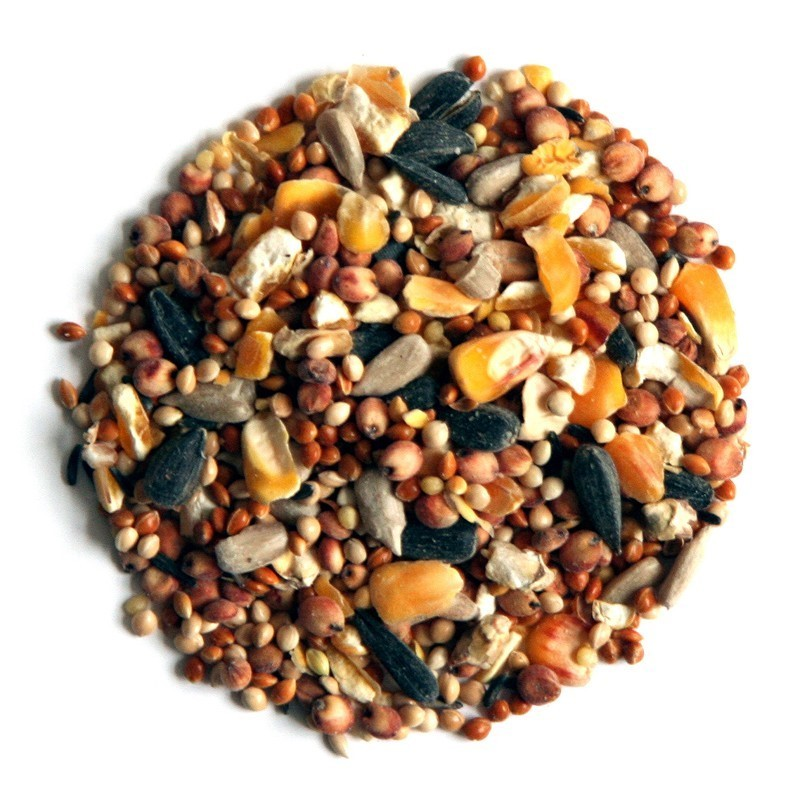 Wild Bird Seed 2KG Bag