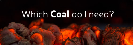 Which Coal